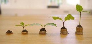 geld zien groeien